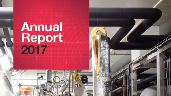 NNE Annual report 2017